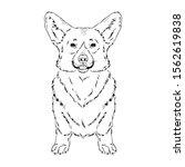 symmetrical vector illustration ...   Shutterstock .eps vector #1562619838
