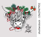 adorable cow with bangs in a...   Shutterstock .eps vector #1562967952