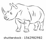 isolated illustration of rhino .... | Shutterstock .eps vector #1562982982