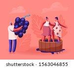 winemaker holding huge freshly... | Shutterstock .eps vector #1563046855