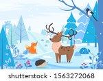 deer and hedgehog  fox and... | Shutterstock .eps vector #1563272068