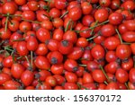 Rose Hip Fruits As A Background