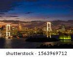 aerial view of tokyo skylines... | Shutterstock . vector #1563969712