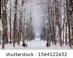 Frosty Snow Alley In The Winte...