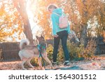 Stock photo young girl playing with dog in autumn 1564301512