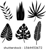 tropical leaves silhouette on... | Shutterstock .eps vector #1564453672