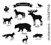 animals. outlines of animals... | Shutterstock .eps vector #156587918