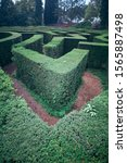 Small photo of Green plant maze. Labyrinth maze garden. Green bushes natural labyrinth, hedge maze. Maze green bushes geometry. Top view.