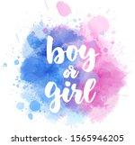 boy or girl. gender reveal...   Shutterstock .eps vector #1565946205