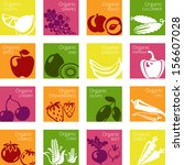 vector illustration of organic... | Shutterstock .eps vector #156607028