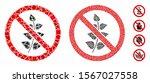 no flora plant composition of... | Shutterstock .eps vector #1567027558