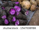 sweet potatoes and other vegetables for sale in the mekong delta vietnam
