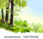 wilderness of  amazon rain... | Shutterstock .eps vector #156750182