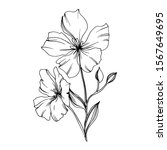Vector Flax Floral Botanical...