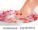 woman putting feet in bowl of... | Shutterstock . vector #1567879972