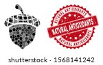 mosaic acorn and rubber stamp... | Shutterstock .eps vector #1568141242
