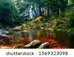 Powerscourt Waterfall In...