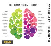 left and right human brain... | Shutterstock .eps vector #1569556192