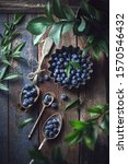 blueberry fruits  berries with... | Shutterstock . vector #1570546432