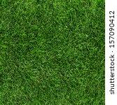 green grass seamless texture.... | Shutterstock . vector #157090412