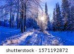 Winter Snow Sunset Forest...
