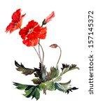 original art  watercolor... | Shutterstock . vector #157145372