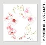 colorful flower on white...   Shutterstock . vector #1571752345