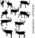 illustration with deer... | Shutterstock .eps vector #15721633
