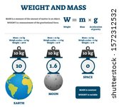 weight and mass vector... | Shutterstock .eps vector #1572312532