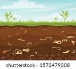 archeology and paleontology...   Shutterstock .eps vector #1572479308