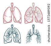 lungs. lungs hand drawn vector...   Shutterstock .eps vector #1572689392