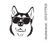 Siberian Husky Dog Wearing...