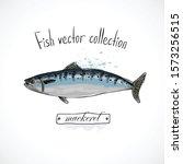 hand drawn set watercolor ink ...   Shutterstock .eps vector #1573256515