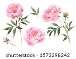 Vector Stock Flower...