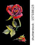Red Gothic Rose With Bud On...