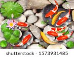 Stone Bed Of A Pond With...