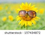 Small photo of Sunflower wearing sunglasses
