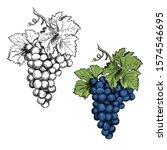 Monochrome Illustration Grape...