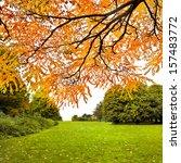 autumn landscape. park in...   Shutterstock . vector #157483772