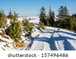 trees along the winding road leading to the mountain in winter - stock photo