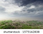 Small photo of Fantasy sapless thirsty landscape background with green grass and sky