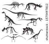 dinosaur skeletons isolated... | Shutterstock .eps vector #1575497812