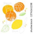 Orange And Lemon Citrus Jam...