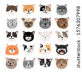 funny cats face emtions. cute... | Shutterstock .eps vector #1576307998