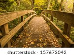 Tanawha Trail Bridge In The...