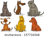 Stock vector cartoon vector illustration of cute dogs or puppies pet set 157726568