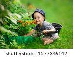 Child Boy Toddler In Hat...