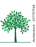 illustration of a green tree | Shutterstock . vector #157757918