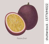 passionfruit exotic ripe sweet... | Shutterstock .eps vector #1577694022