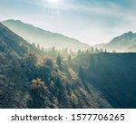 fog among the christmas trees... | Shutterstock . vector #1577706265